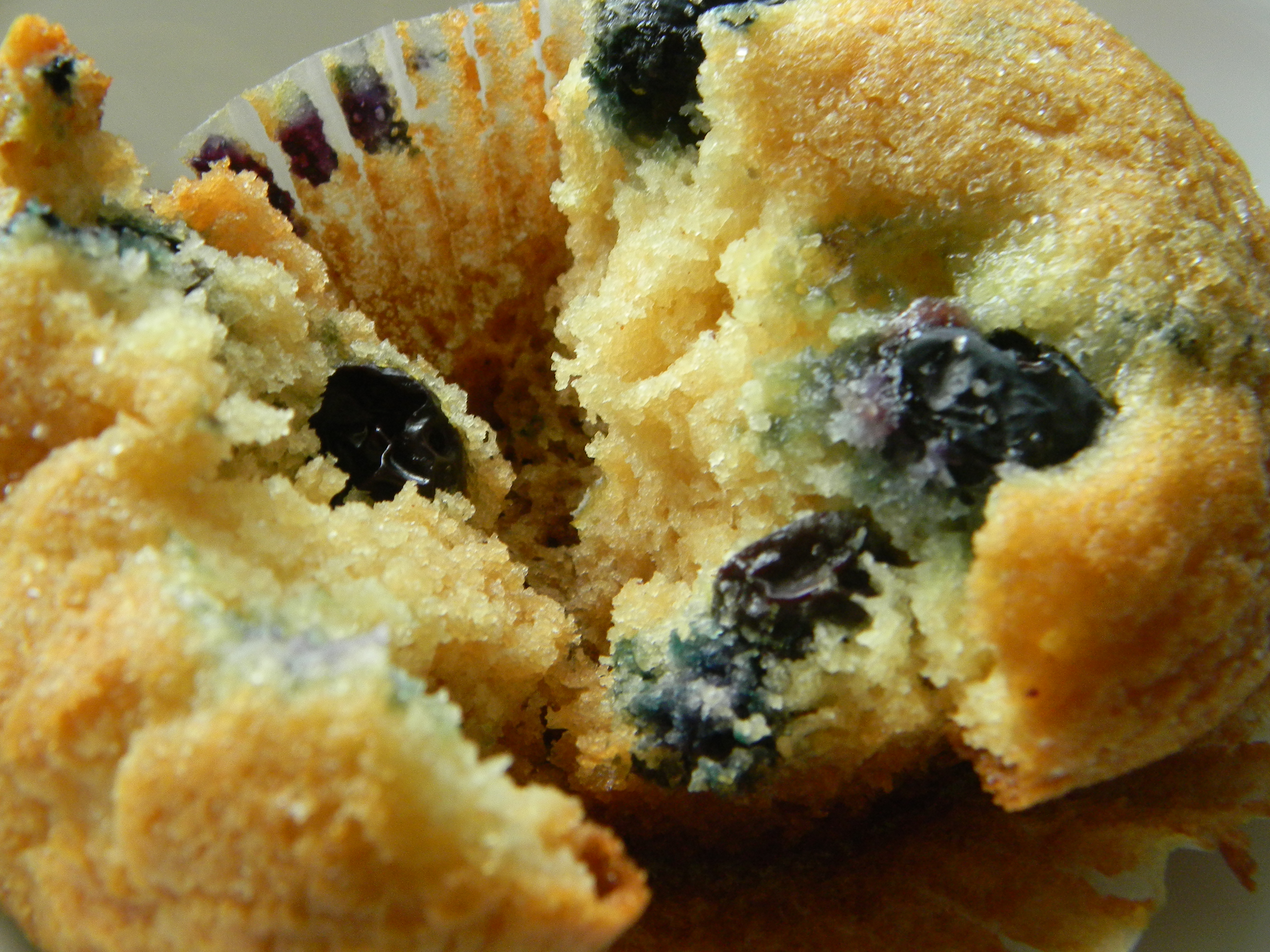 Blueberry Muffins With Icing Blueberry Muffins